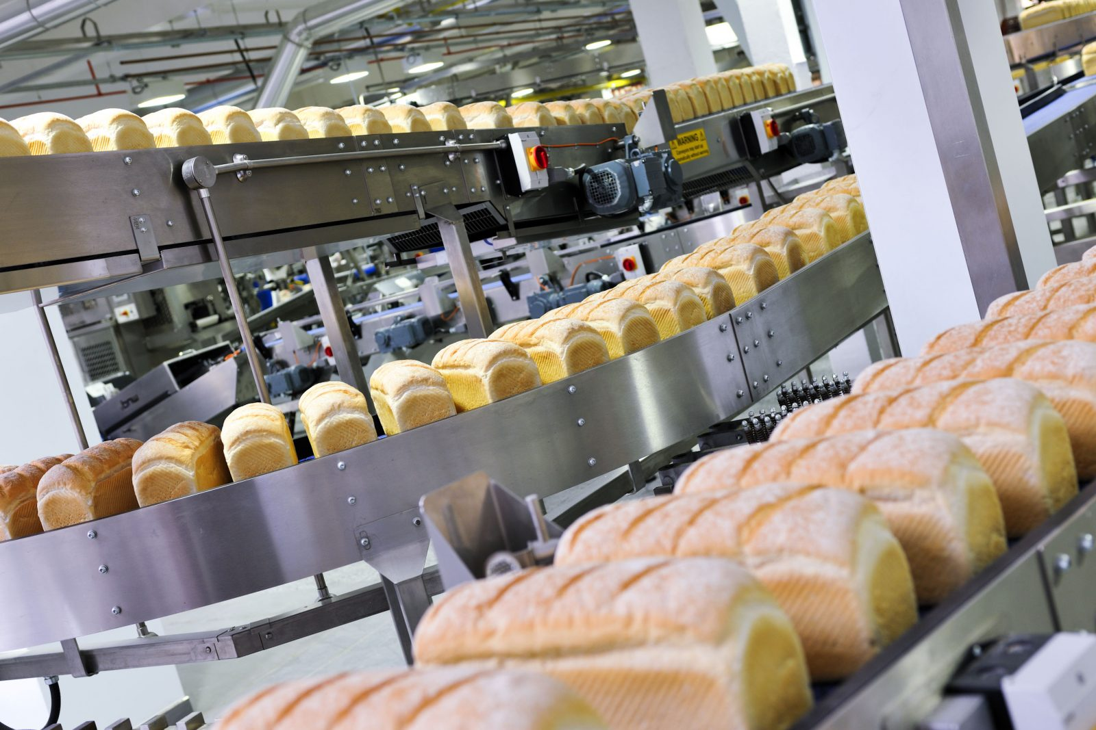 Manufacturing dietary bread and bakery products